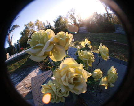 graveyardflowers