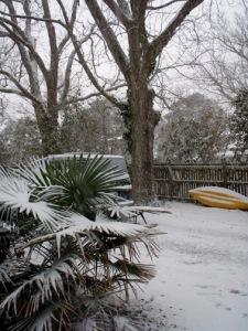 snowfrntyardblg1