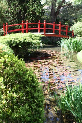 Japanese Garden in Kildare Ireland by Andei