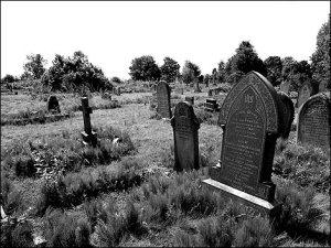 radnor_street_cemetery_8_470x353
