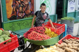 Boy with Fruit Stand, San Salvador