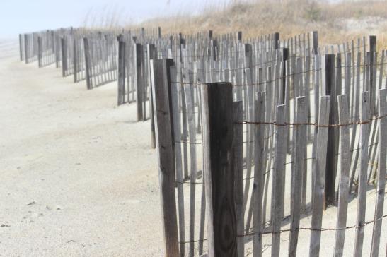 Beach Fence Atlantic Beach